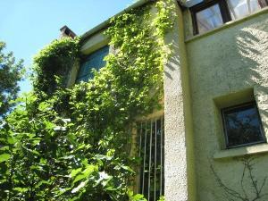 Vrijstaand huis met veel grond te koop aangeboden in de haut languedoc - Stenen huis uitbreiding ...